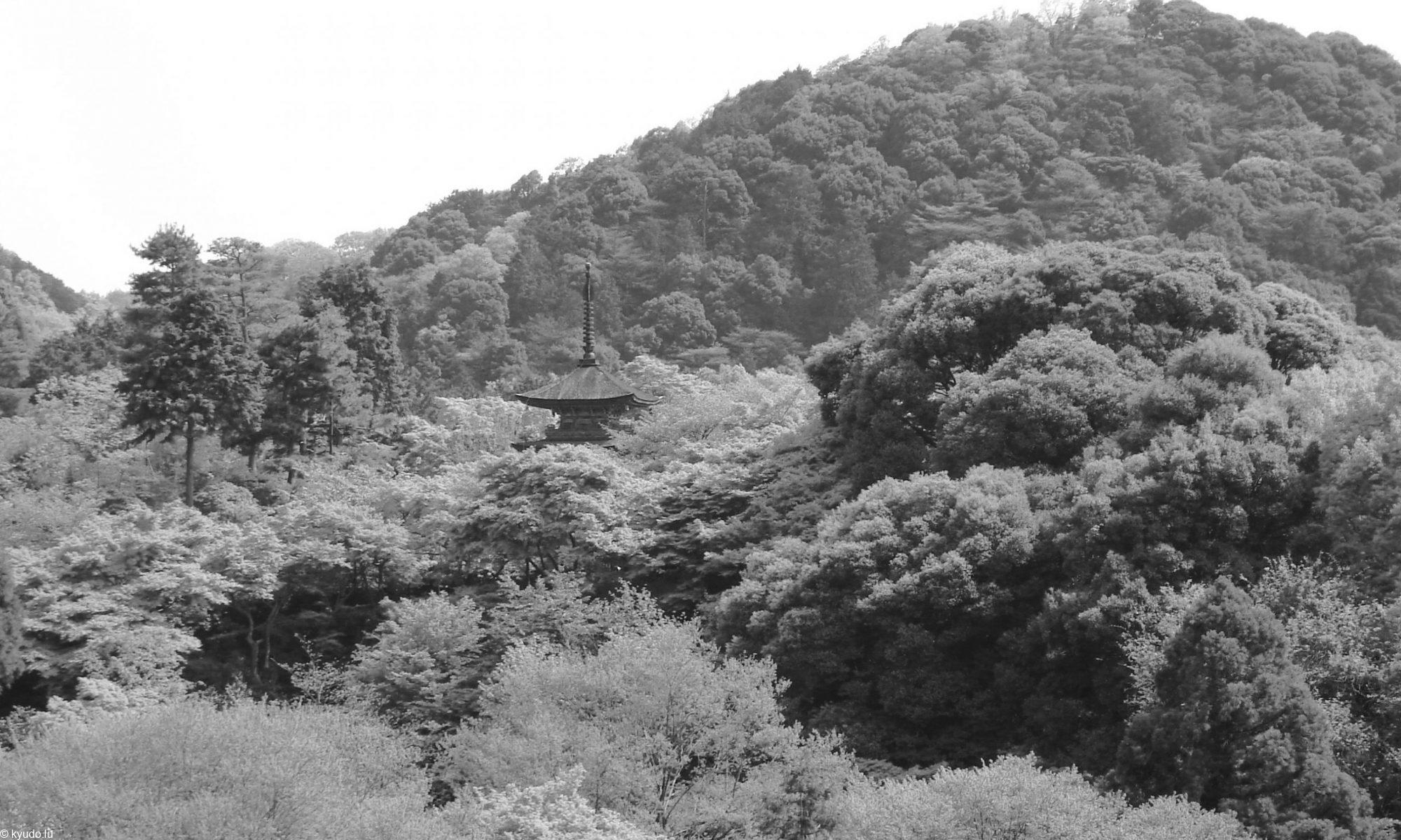 Kyudo - l'art du tir à l'arc traditionnel japonais